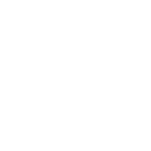 Liferay platinum partner logo