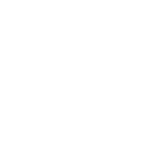 Magento global elite partner