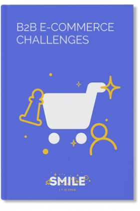 B2B e-commerce challenges